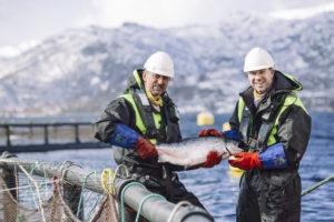 Marius Fiskum © Norges sjømatråd